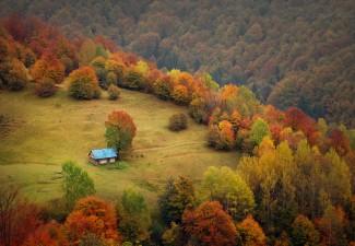 Igor-Melika-Autumn-Karpaty-1
